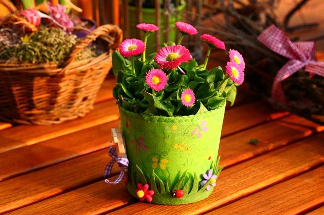 spring bloomington